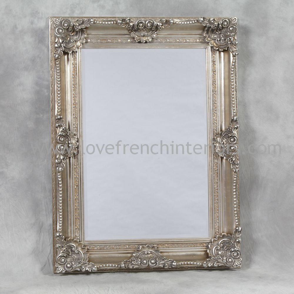 Silver rectangular classic framed mirror for Classic mirror